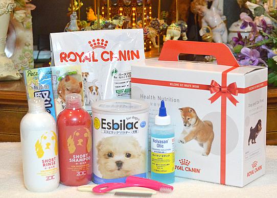 ロイヤルカナンプレミアムフード、ミルク、耳洗浄剤、お手入れ用品小物、シャンプー、リンス、玩具をプレゼント