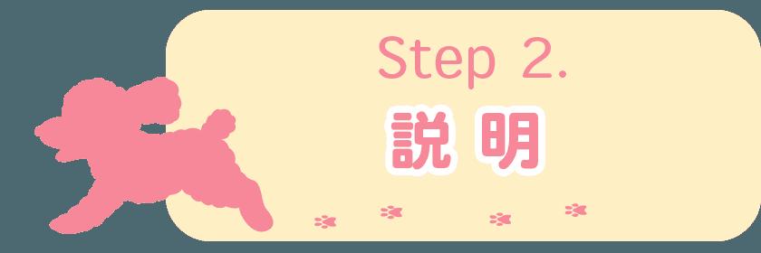 Step 2. 説明