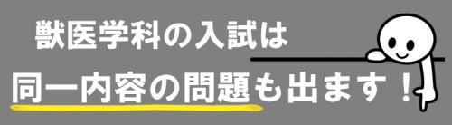 解説速報2.png
