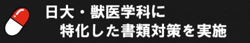 日大 獣医 推薦対策5.png
