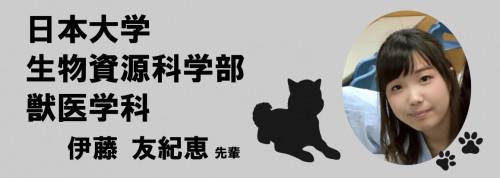 日大獣医.png