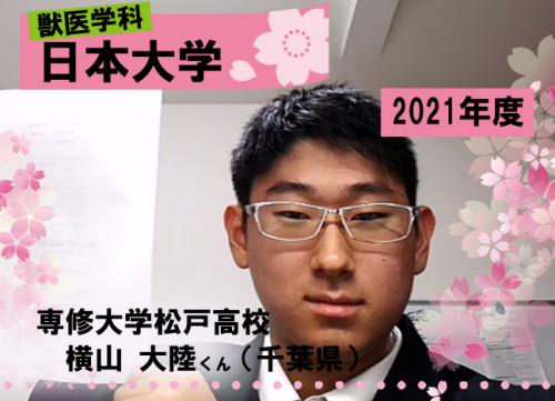日大合格 獣医.png