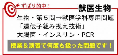 岡山理科大学 生物的中.png