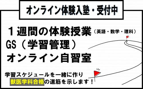 オンライン体験授業.png