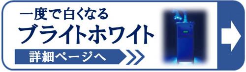ブライトホワイト詳細ページへ.JPG