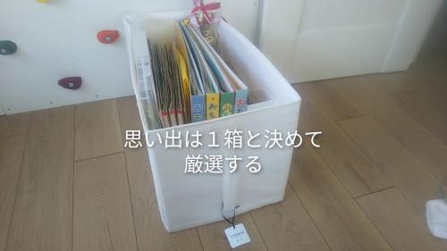 CollageMaker_20210412_173740953.jpg