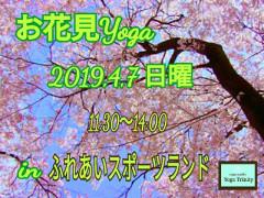 19-03-19-23-58-06-432_deco.jpg