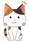 cat_sakura_cut_female1.png