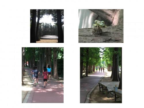 別所沼公園その2.jpg