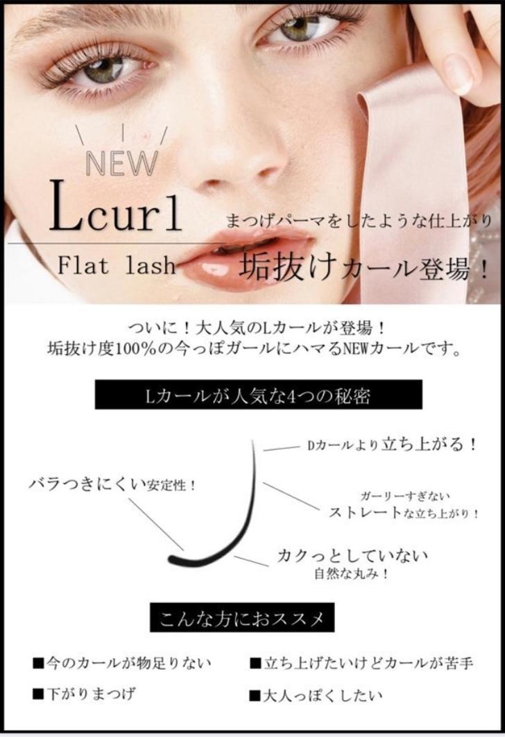 新 Lカール