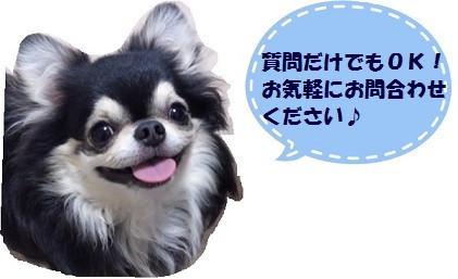 ふきだし壱.jpg