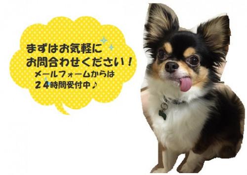 ふきだし仁2.jpg