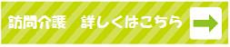 介護詳細.png