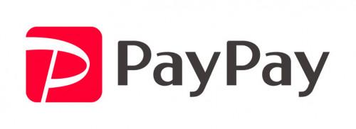 PayPay_logo_1[1].jpg