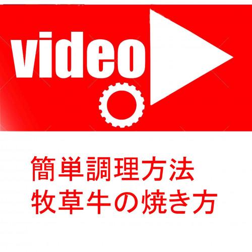 動画ボタン.jpg