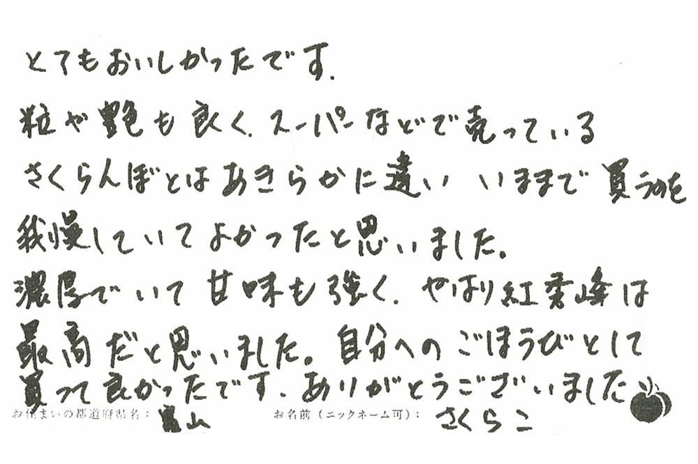 v111.jpg