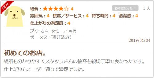 kuchikomi20190104.png