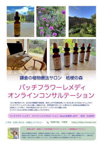 桔梗の森オンラインコンサル.jpg
