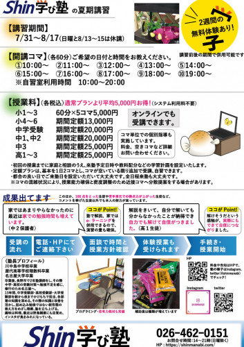 Shin夏期チラシB4たて2020_配布用裏面.jpg