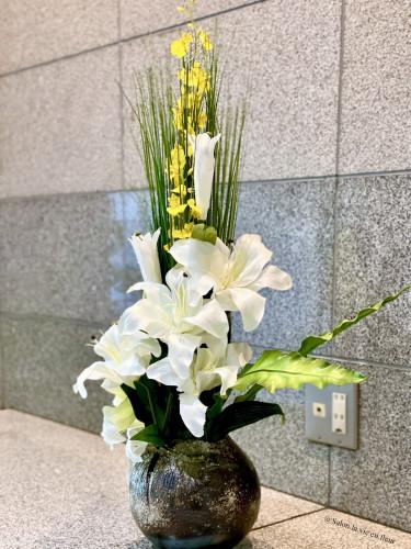 (1)文京区小石川.jpg