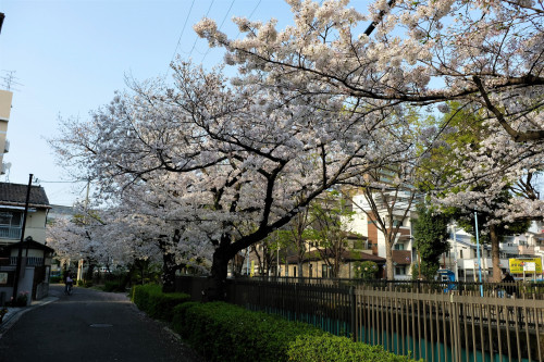 大阪市-2.jpg