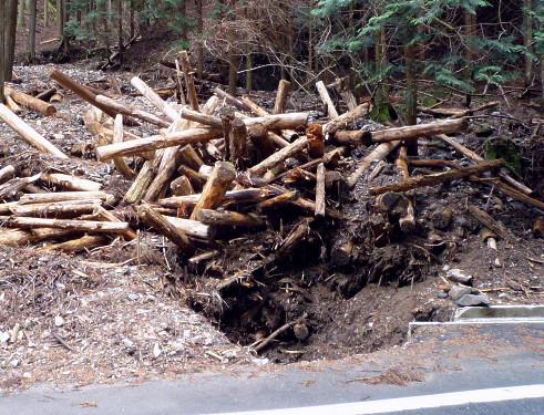 wp笠取高良城林道を塞いだ土砂崩れの復旧後.png