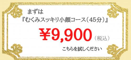 むくみスッキリ小顔コース(45分).png