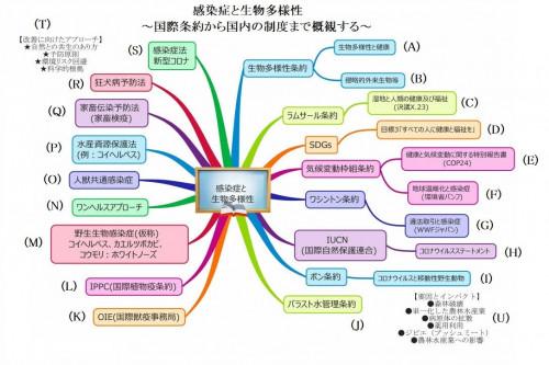 感染症と生物多様性_004.jpg