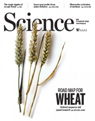 sciencecover.gif
