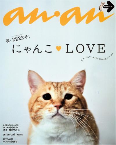 anan_2222_裏表紙 (2).jpg