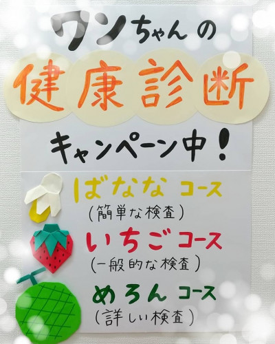 わん健診2019秋.jpg