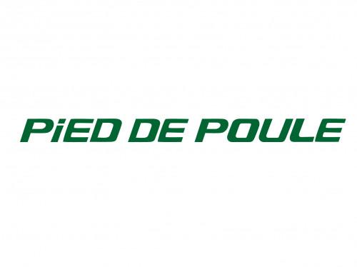 PiED DE POULE ブログロゴ.png