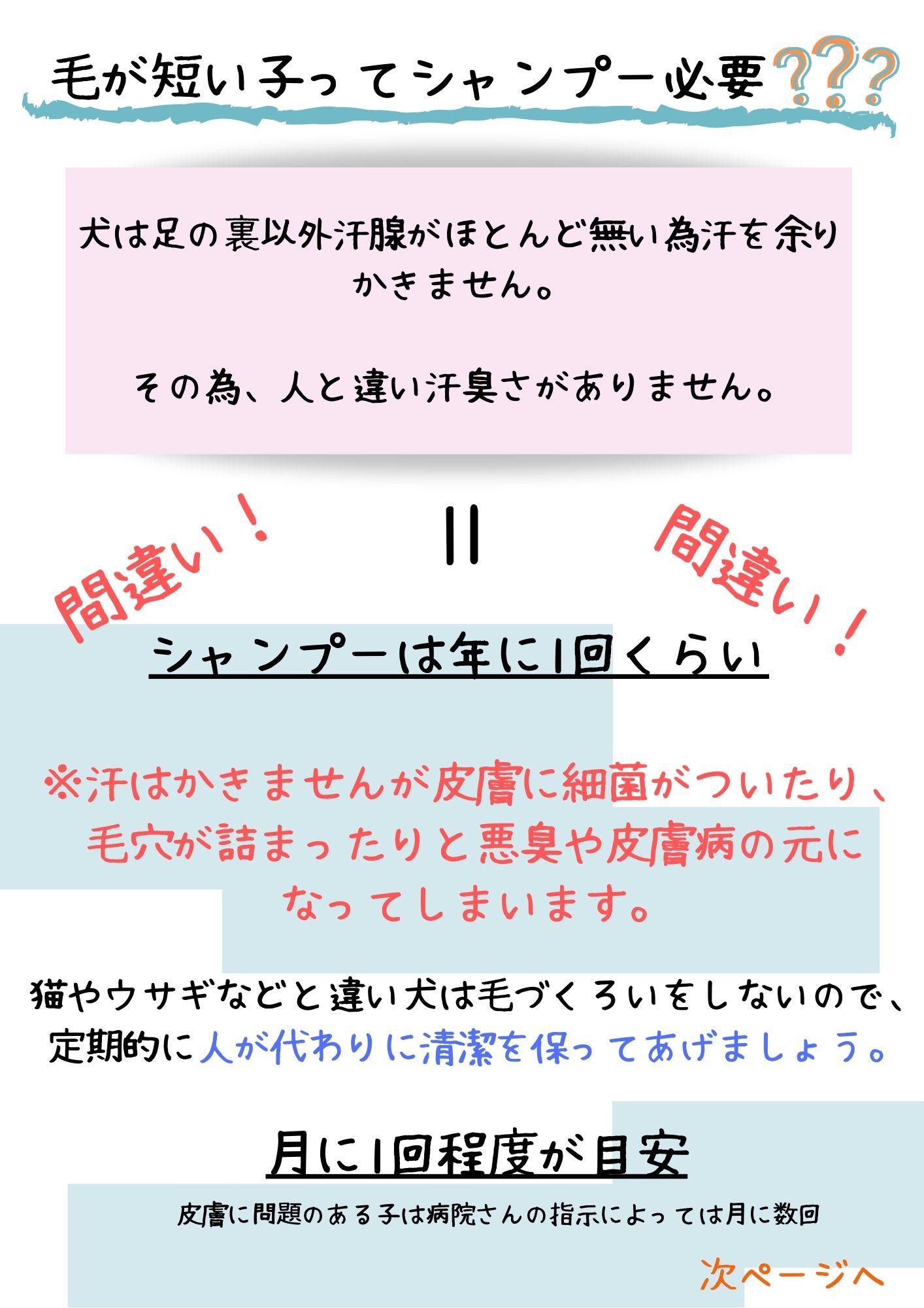 短毛種シャンプー.jpg