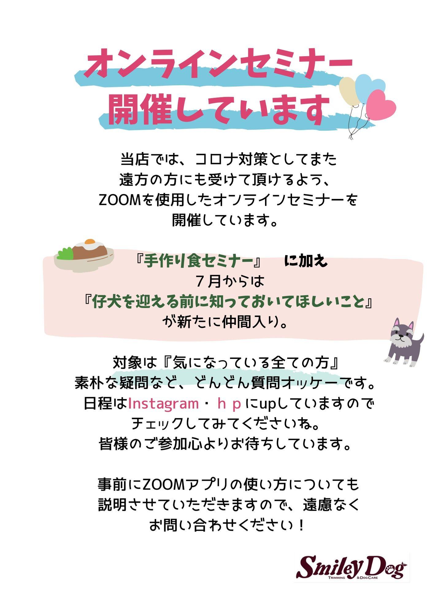 Cream Hot Air Balloon Daycare Flyer (4).jpg