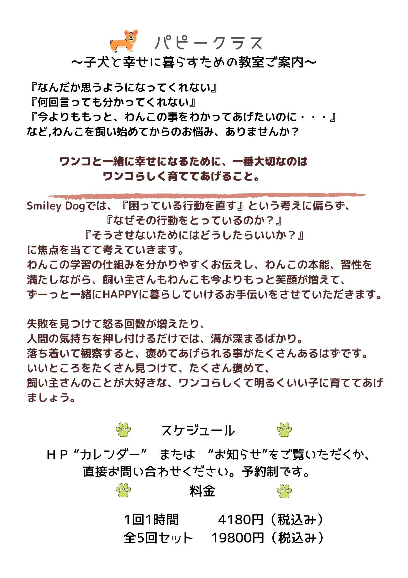 パピークラス (15).jpg
