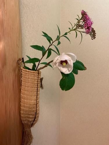 茶室の花.jpg