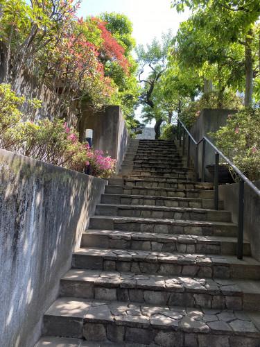 つつじ咲く清明庵階段.jpeg