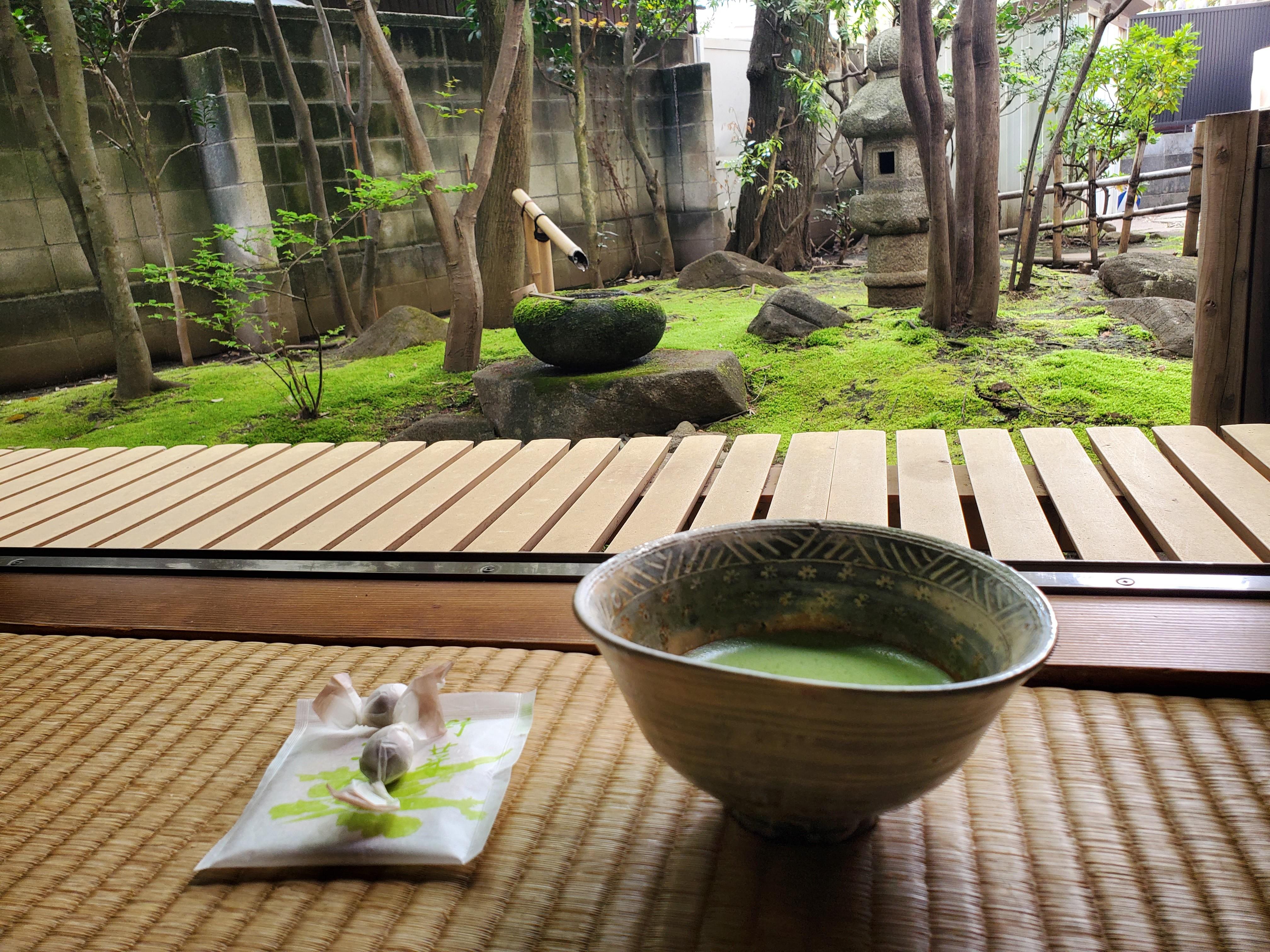 お抹茶と中庭.jpg