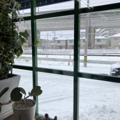 宮城野区美容室ヘアペッピーノ雪.jpg