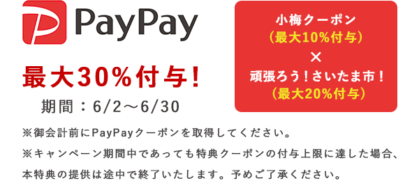 apypay.png