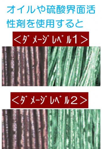 ダメージレベル1.2.jpg