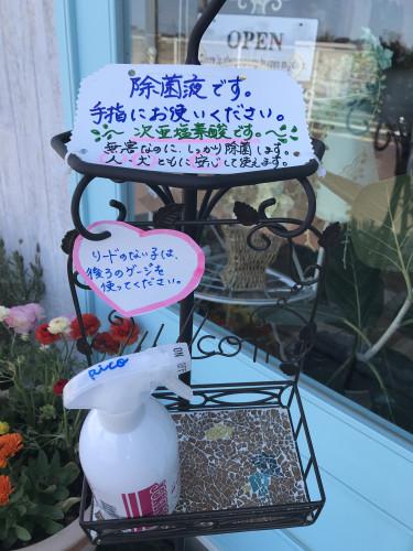 コロナ説明.jpg