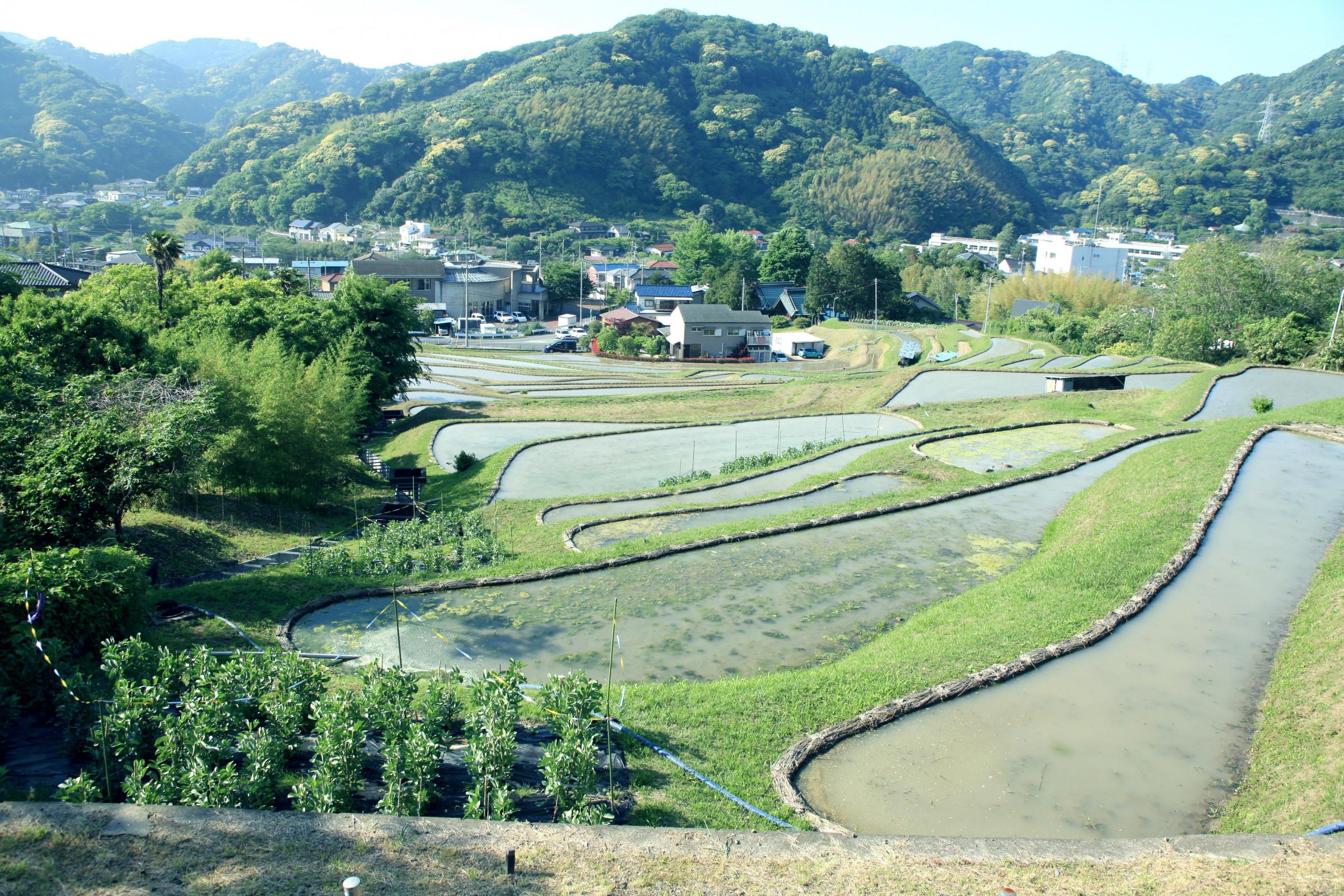 町 ホームページ 葉山