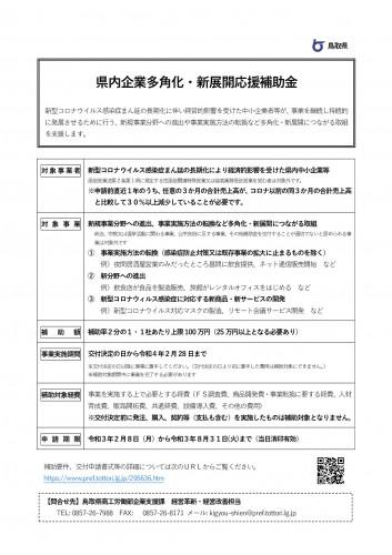 3_「県内企業多角化・新展開応援補助金」チラシ_p001.jpg