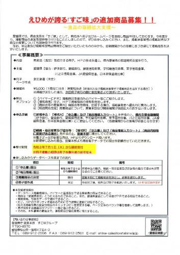 chirashi-1-1-pdf.jpg