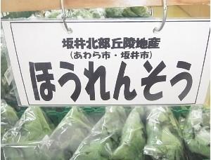 とれたて野菜です♪